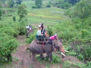 giro su elefante
